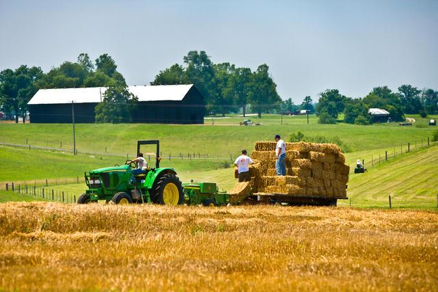 Baling straw in central Kentucky