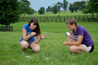 Horse Pasture Evaluation Interns